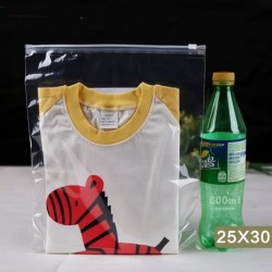 T2 Transparent Plastic Bag with Zip Lock (25cmX30cm, 1pc)